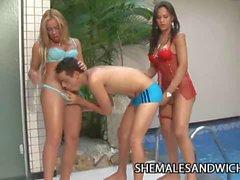 La Belle Sandorran & Sabrina Alves Hot Trannies