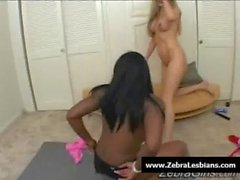 Zebra Girls - Ebony lesbian babes fuck deep strapon toys 06