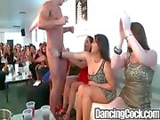 Dancingcock Hotel Party