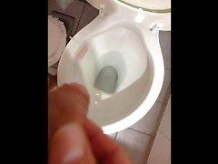 WC Bathroom pissen ( Pis entfernt en el baño Gefällt )