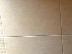 Domestique sur toilette