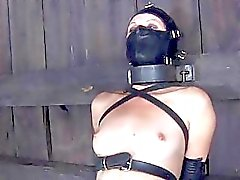 Gagged and tied up girl gets her clits satisfied