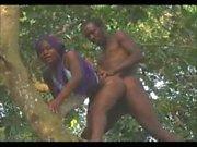 Africa X Sauvage 1