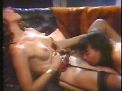 kay parker sex classics