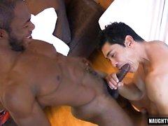 Latin гей анальный секс и ебля