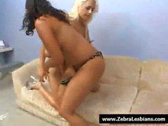 Zèbre lesbiennes - sexy babes lezbo noir baisent ados blanc le 23