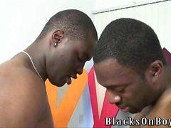 blacks che condividono un comico tizio contenti
