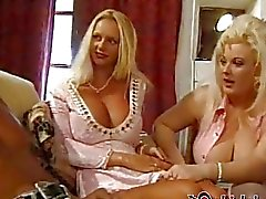 These two milk maidens bring four fantastic tits