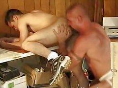 Gays ours de baises minet