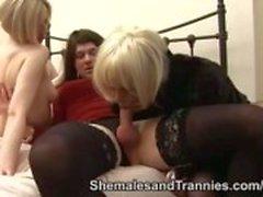 2 Рэнди трансвеститов использовать один шлюхой