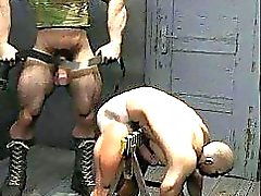 3D Muscle Homosexuell bei Huge Dicks !