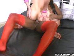 Luana Weickeirt Ebony Shemale Große Schwänze in Ebony Dick in Ivory Ass