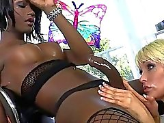 Tgirl Chanel Couture dominates and fucks