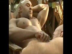 Kas Ayı Black Dick KOMBİNE