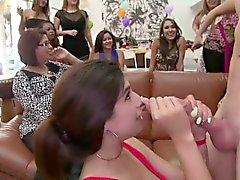 Петух участник роговой Ladies обожает сосать Дика