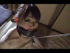 japanilainen tyttö Bahianjokihaukka sekä gagged