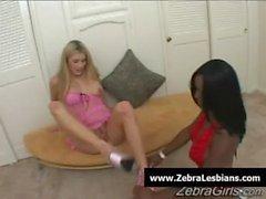 Zebra Lesbienne - sexy de babes lezbo noir baisent années de l'étudiante blanc 04