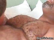 Гей черного медведя имеет большой секс в он сосет часть6