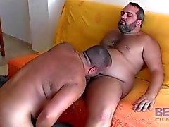 Orsi di Spagna