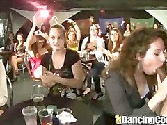 Dancingcock Amateur Milfs Big Cock Orgy