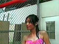 Asian Tranny do vintage Bancadas dela paizinho