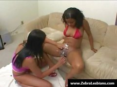 Zebra Girls - Ebony lesbian babes enjoy deep strap-on fuck 13