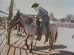 Cowboys Van Durty bajo el sol de