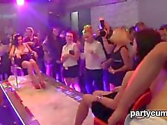 Naughty kittens get completely insane and undressed at hardcore party