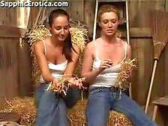 Farm Fantasy 2