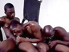 Impresionantes de la fiesta Orgía Negro