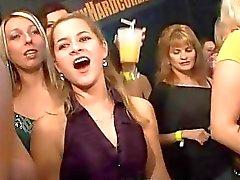 Chicas calientes se machacan celo durante la fiesta orgy