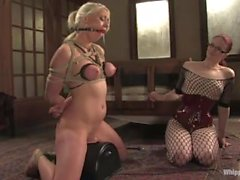 WHIPPEDASS - Lorelei Lee e Claire Adams
