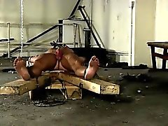 Homosexuell Jungs Hergestellt , um seine erste sind zum Kotzen