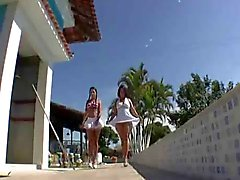 Бразильское большой попа Реванш - Derty24