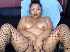Honey Gold Black Beauty Hot Live