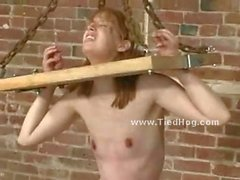 Slut tied like a hog with ropes and mouth ball gag gets abused and tortured by pervert