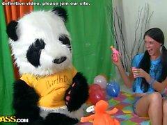 Sexe chaud comme cadeau de Bday pour Panda