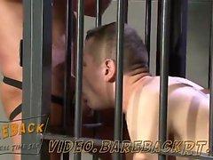 Muscles de papa de Tor Matthews conserve enfant bleue de Bailey dans une cage