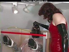 Mistress Jean Bazı Yaramaz Makineleri Has