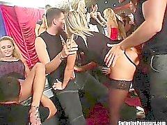 Intressanta partiets chickar suga stakar på klubban orgy