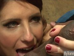 Красивая Т. С. Эйми Daly трахает в жопе