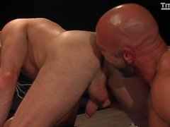 Jesse & Adam. Anal Power Fick-Dateien