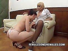 Videor Shemale Sheina är chef på på sitt kontor och hon blir kåt