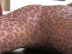 Nylons liebenden Domina geile in Strumpfhose