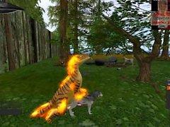 Gold Raptor Paarung mit einem Wolf