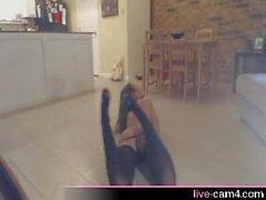 Webcam Zusammenstellung von Eseln auf Webcams Schütteln