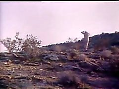 Roko Video- Kate ile indians 1979