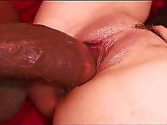 Stor svart kuk på röd soffa