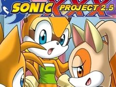 sonic project xxx 2.5