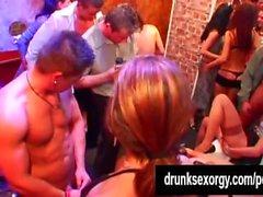 borrachos clube bi porra